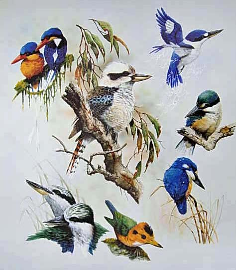 My Favourite Kingfishers $100